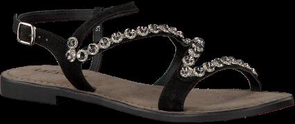 Black Lazamani shoe 75.582
