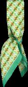 Romano Shawls Amsterdam Foulard 85611 en vert